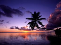 Beautiful BeachWallpaper #11030 565