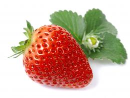: Strawberry Photos, Fresh Strawberries, Garden Strawberries 421