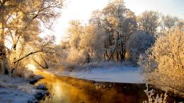 Wallpaper river, snow, winter, frost, forest desktop wallpaper 1237