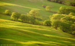 Green Hills Wallpaper 367