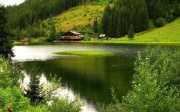 Green forest by the green lake wallpaper #20500 225