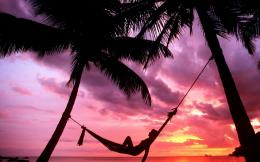 nature silhouette paradise relaxing hammock palm trees 1920x1080 286