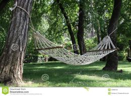 Hammock Among Two Trees Royalty Free Stock ImageImage: 33888706 333