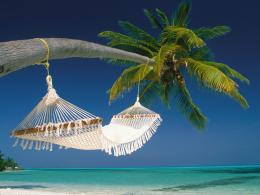 Pin Maldives Beach Hammock Nature Ocean Palm Trees Pool Relax on 1891