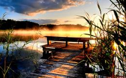 Image: Jetty Lake Sunset Reed Fog wallpapers and stock photos 1369