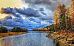 Download Beautiful Sky Over Gnarly Forest Hdr wallpaper 1121
