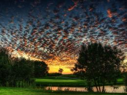 Download Bleak landscape with mean skies at twilight wallpaper in 791