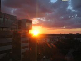Miami Sunset 970