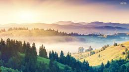 misty morning in the hills wallpaper nature wallpapers misty morning 743