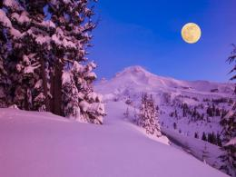 Moon Light Up Winter Night Hd Wallpaper | Wallpaper List 405