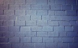Related For Plant urban brick wall 1774