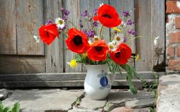 Poppies in a vase wallpaper #20895 883