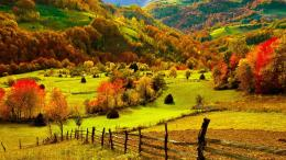 nature landscapes fields hills fence grass farm trees forests autumn 355