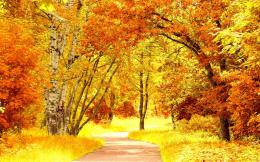 Red yellow autumn scenery Wallpapers Pictures Photos Images 593