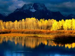 BEAUTIFUL AUTUMN FOLIAGE IMAGESYELLOW LAKE 155