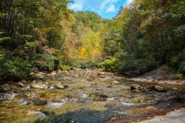 Home » Hiking » Wilson Creek Trail, Pisgah National Forest 1041
