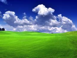 Green grass and blue sky by s1lv3r bg 1150