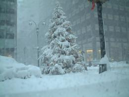 Description Nyc snow 3 jpg 370