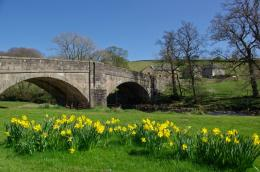 PanoramioPhoto of Spring flowers at Slaidburn Bridge 1056
