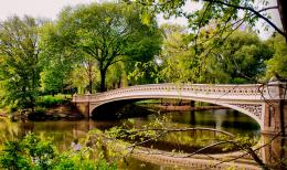 Bow Bridge in Spring | Central Park Photos 835