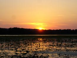 Sunset over Lotus Pond by leetSpaz on DeviantArt 270