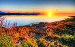 Download Sunset over the pond High quality wallpaper 1250