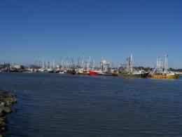 PanoramioPhoto of Fishing Fleet at Cape May Harbor 850