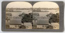 c1930s Gloucester Fishing Fleet Real Photo Stereo ViewGloucester 1075