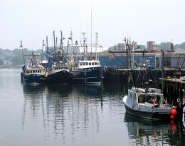 PanoramioPhoto of Gloucester Harbor Fishing Fleet View from North 1659