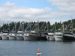 Commercial fishing boats lined up in Gig Harbor for the annual 647