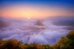 Name : Nice desktop wallpaper of river Saar, photo of morning, fog 274