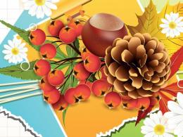 Vector fall daisies wallpaper 411