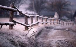 download old fence in winter wallpaper in nature wallpapers with all 1177