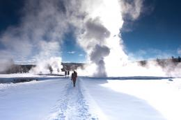 Yellowstone in Winter | Employee Destination Guides 523