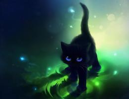 Black Cat With Blue EyesHD Wallpaper, get it now! 529
