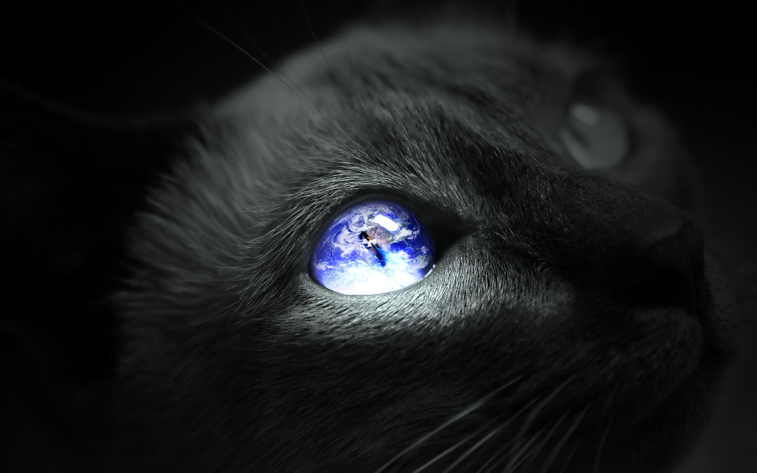 Earth Cat eye Wallpapers Pictures Photos Images 1342