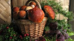Download Basket of mushrooms wallpaper 846