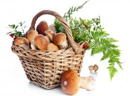 Mushrooms Basket Fall Food #HSO 105