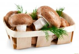 Wallpaper Little Basket Of Mushrooms1920 x 1336Food Drinks 939