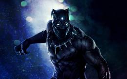black panther hd wallpaper 461