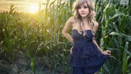 Blonde girl in a corn field wallpaperGirl wallpapers#34473 1789