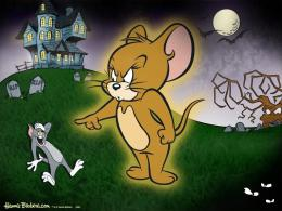 Tom And Jerry Cartoons Free Download 1505