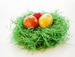 Easter Eggs Wallpapers Delicious Eggs on Grass Nest for Easter 883
