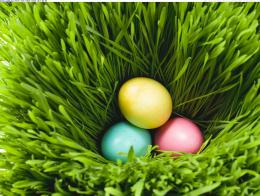 three easter eggs in grass 335