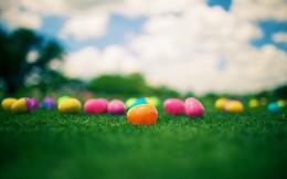 Easter eggs in the grass wallpaper #11239 1306