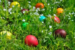 Easter eggs in grass — Stock Photo © natlit #8510117 407