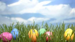 Easter Eggs In Grass wallpaper 239