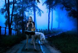 fantasy mood girl girls women wolves road forest gothic wallpaper 269