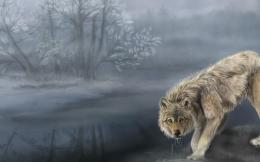 WolfFantasy HD Wallpapers Wallpaper View 1411
