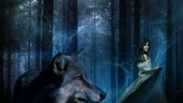 wallpaper proslut: HD Wolf Wallpapers 1786